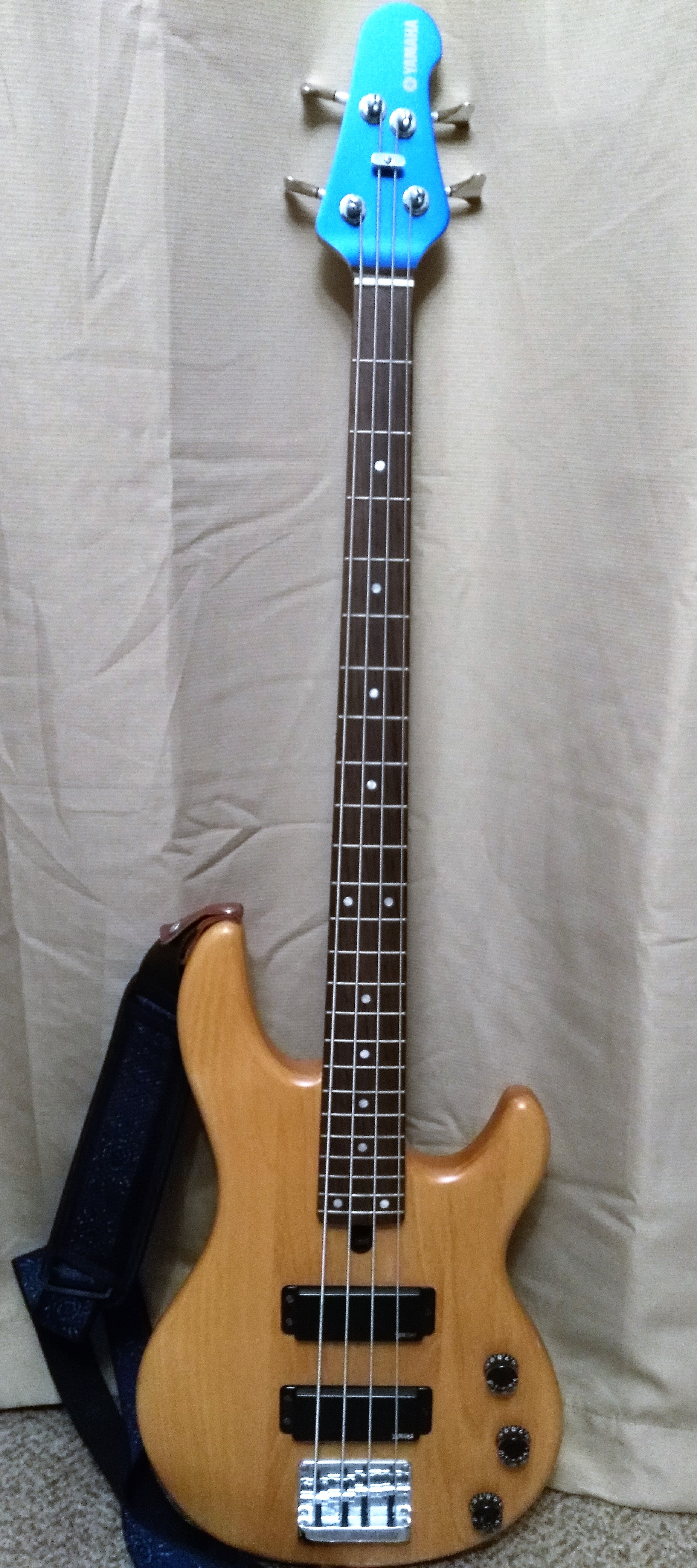 electric bass lessons in cary nc and raleigh nc dave 39 s music. Black Bedroom Furniture Sets. Home Design Ideas